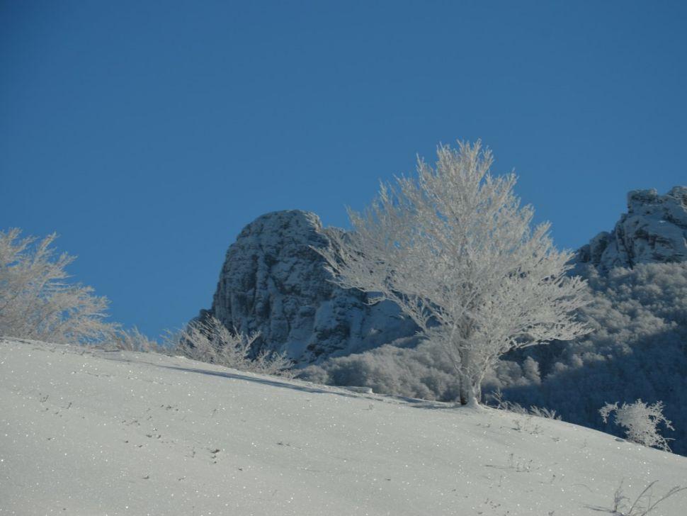 Stara planina sneg skijanje